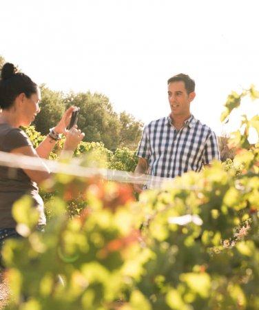 Photo pour Femme aux cheveux bruns prend la photo de l'homme dans une chemise à carreaux dans les vignes sur une journée ensoleillée - image libre de droit