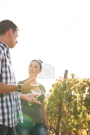 Photo for A young man and woman chatting in the vineyards wearing casual clothes with a white sky in the background - Royalty Free Image