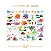 Vector illustration collection Cartoon Animals Insects SET 02 Clip art isolated on transparent background Graphics characters Hand drawn creatures Nature design elements