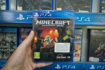 Minecraft videogame on Sony Playstation