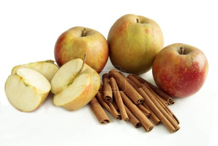 cinnamon barks as aromatic spice