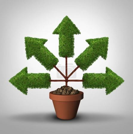 Photo for Cover all bases business growth in all directions as a  tree with arrows pointing in multiple places as a connected network for expansion with 3D illustration elements. - Royalty Free Image