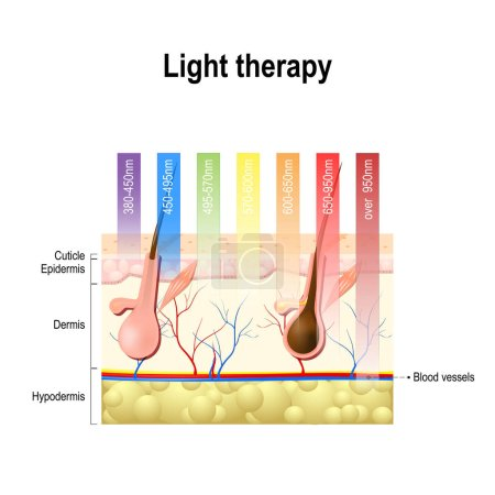 light therapy, Phototherapy or laser therapy.