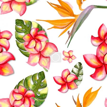 Photo for Seamless pattern with plumeria flowers, orange flowers Strelitzia and leaves of monsters, watercolor illustration - Royalty Free Image