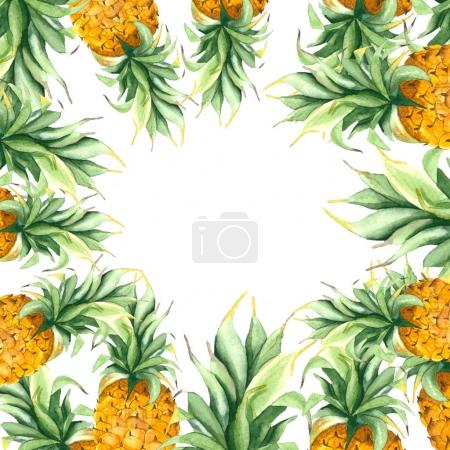 Frame of pineapples with leaves