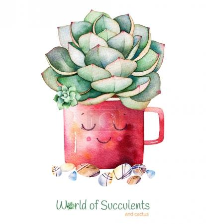 Photo for Watercolor handpainted succulent plant in pot and pebble stones.Watercolor clipart,individual flower pot isolated on white background.Perfect for your project,cover,wallpaper,pattern,gift paper,wedding - Royalty Free Image
