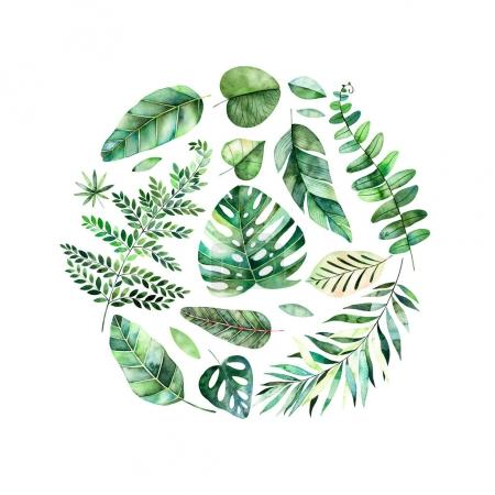 Photo pour Bordure de cadre aquarelle colorée avec des feuilles tropicales colorées. Parfait pour mariage, cadre, citations, motif, carte de vœux, logo, invitations, lettrage, etc. - image libre de droit