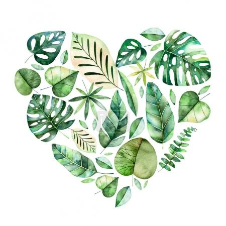 Handpainted illustration with colorful tropical leaves.