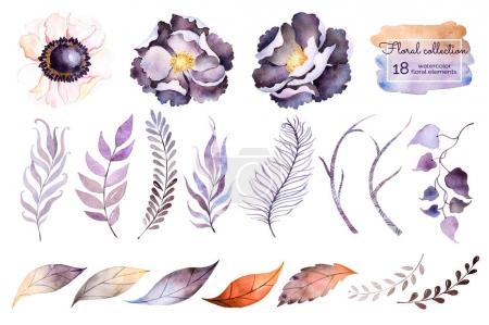 watercolor collection with flowers