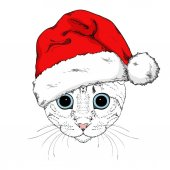 Graphical portrait of cat in Santa Claus hat isolated on white background Cute cartoon cat with blue eyes for New Year and christmas design