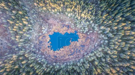 Aerial drone view of natural colorful trees around Pond water.