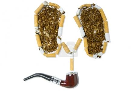 Tobacco pipe and cigarettes on white background