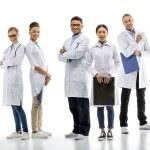 Постер, плакат: Group of professional doctors