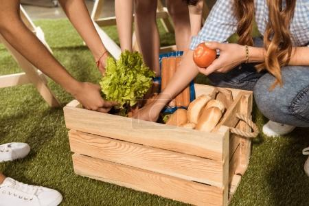 Photo for Cropped shot of young women holding ingredients for barbecue from picnic basket - Royalty Free Image