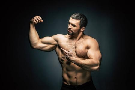 Photo for Portrait of shirtless sportive man  pointing at biceps isolated on black - Royalty Free Image