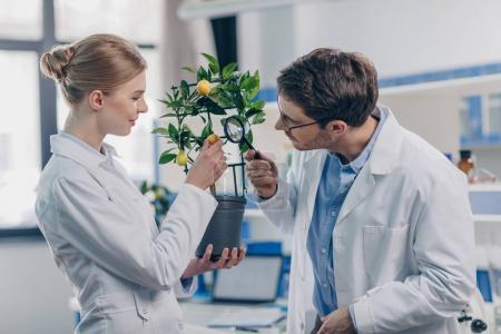 biologists