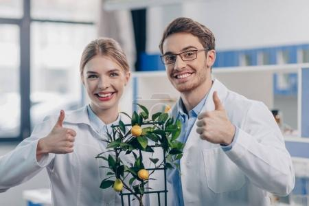 Photo for Smiling biologists with lemon plant showing thumbs up in laboratory - Royalty Free Image