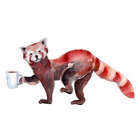 Photo pour Illustration aquarelle de panda rouge avec tasse de café, isolé sur fond blanc - image libre de droit