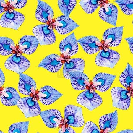 Photo pour Moraea aquarelle transparente motif. Fleurs aux couleurs vives tropicales isolés sur fond jaune, design dessinés à la main pour le fond, papier peint, textile, emballage et etc.. - image libre de droit