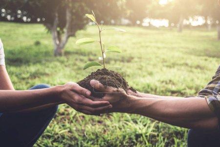 Photo pour Jeune couple portant un semis à planter dans le sol dans le jardin comme sauver le concept du monde, la nature, l'environnement et l'écologie . - image libre de droit