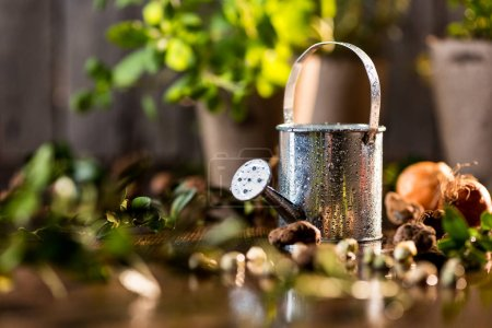 little watering can