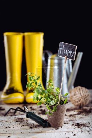Photo pour Vue rapprochée de la plante verte en pot avec carte heureuse et râteau de jardin - image libre de droit