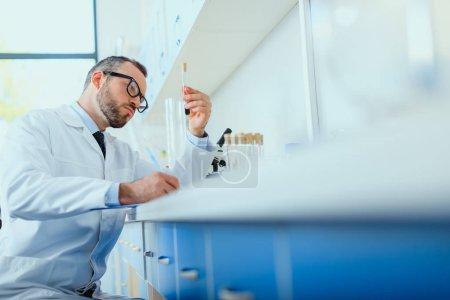 Photo pour Scientifique barbu sérieux dans les lunettes travaillant avec des éprouvettes en laboratoire chimique - image libre de droit