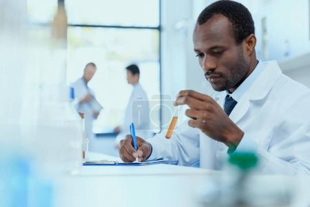 Photo for African american scientist in white coat holding and examining test tube with reagent, laboratory researcher concept - Royalty Free Image