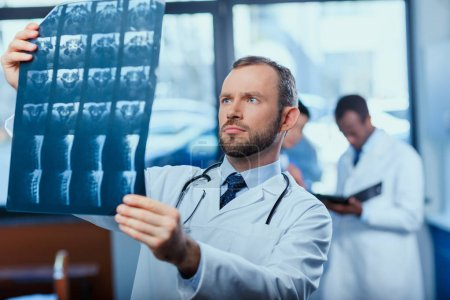 Photo for Portrait of focused doctor analyzing x-ray picture with colleagues behind - Royalty Free Image