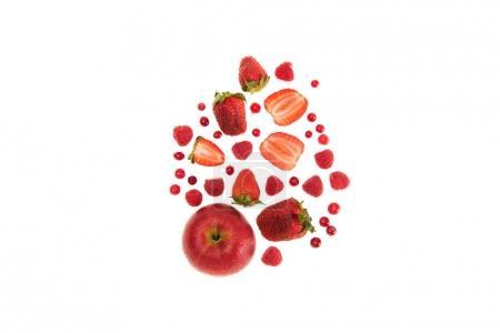 Photo pour Fruits rouges biologiques différents et baies isolées sur blanc avec espace de copie - image libre de droit