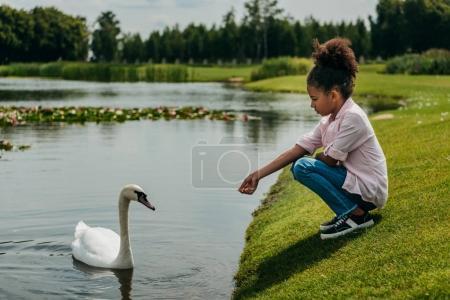 Photo pour Vue latérale d'une petite fille afro-américaine alimentation swan près du lac dans le parc - image libre de droit
