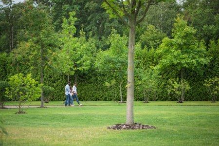 Photo pour Jeune famille afro-américaine avec petite fille marchant ensemble dans le parc - image libre de droit