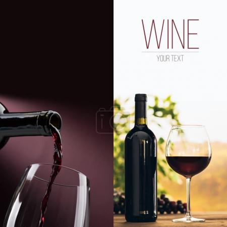 Wine tasting and winemaking poster