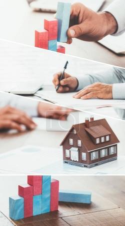 Real  estate and finance advisor