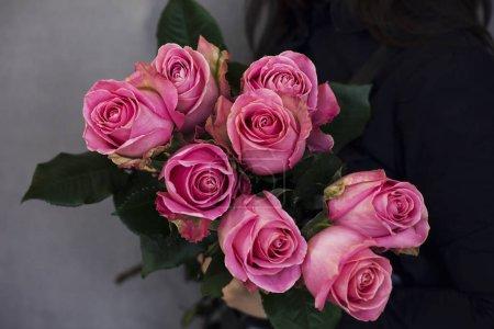 der große Strauß schöner rosa Rosen in Frauenhand auf grauem Hintergrund