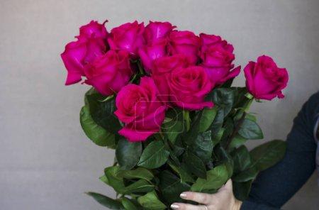 großer Strauß wunderschöner dunkelrosa Rosen in den Händen