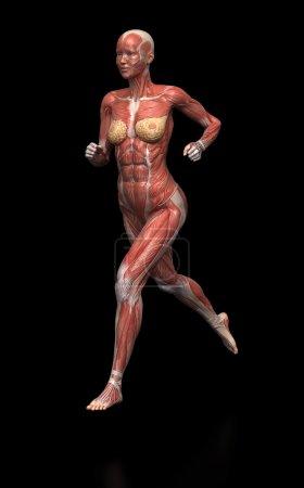 running woman muscles