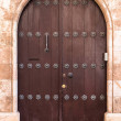 Door close-up in Cathedral (Catholic cathedral), T...