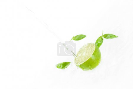 Half of lime with green leaves