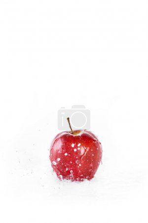 Red fresh apple with water drops