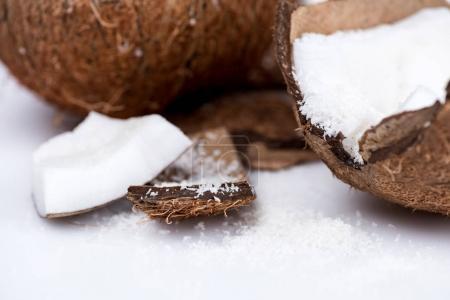 organic coconut with shavings