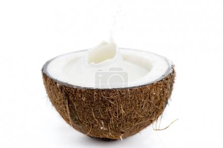 ripe tropical coconut with milk