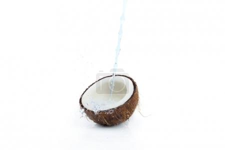 ripe tropical coconut with water