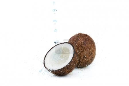 ripe tropical coconuts with water