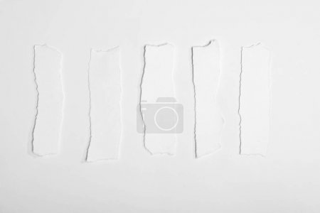 Photo for Top view of torn empty white note papers isolated on white - Royalty Free Image