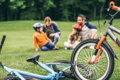 family with bicycles at park