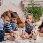 Постер, плакат: multiethnic children with labrador puppies