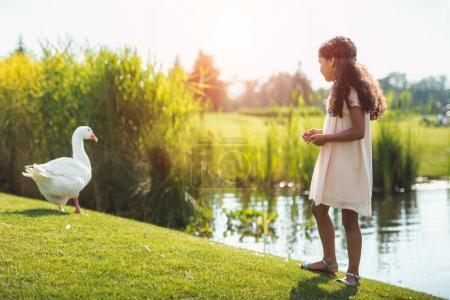 Photo pour Petite fille afro-américaine nourrir l'oie près du lac dans le parc avec rétro-éclairé - image libre de droit