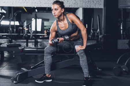 Photo for Sportive woman exercising with dumbbell in gym - Royalty Free Image