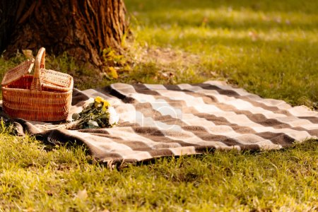 Photo for Empty picnic blanket and a basket on a grassy lawn - Royalty Free Image